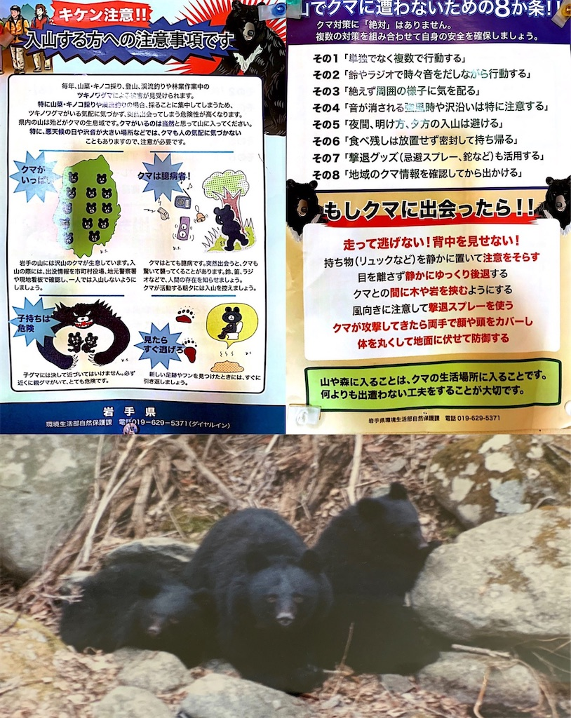 f:id:kazz-matsumura:20200819114535j:plain