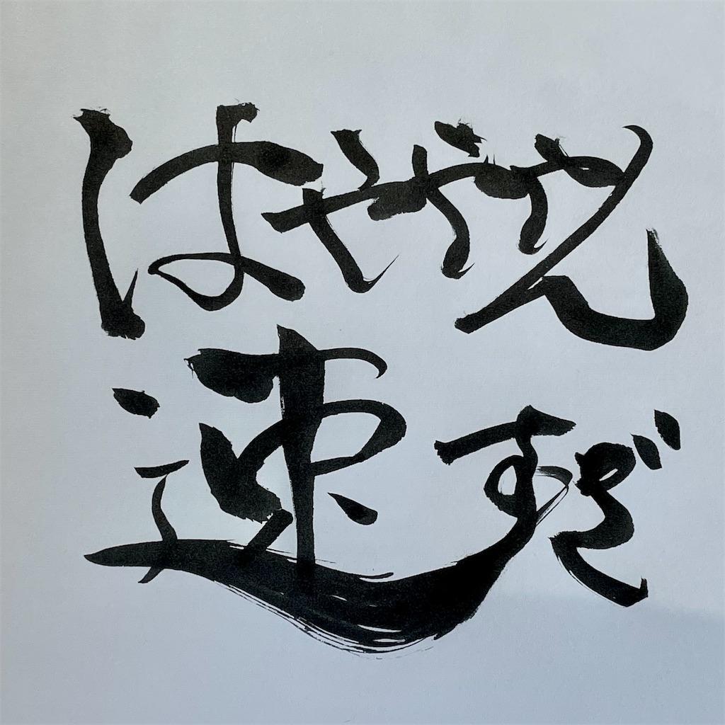 f:id:kazz-matsumura:20210103192744j:plain