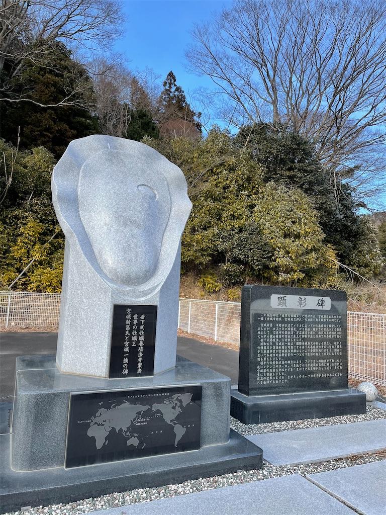 f:id:kazz-matsumura:20210111042621j:plain