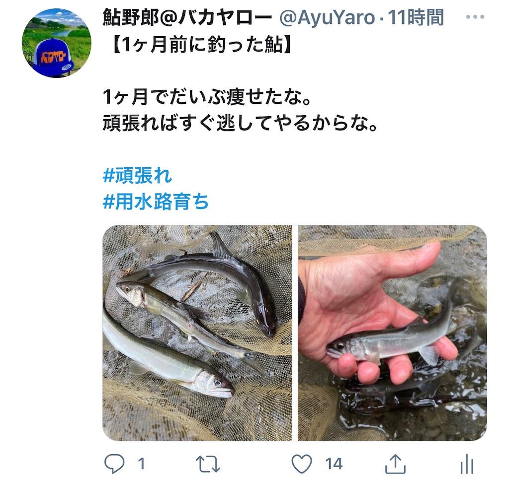 f:id:kazz-matsumura:20210714175207j:plain
