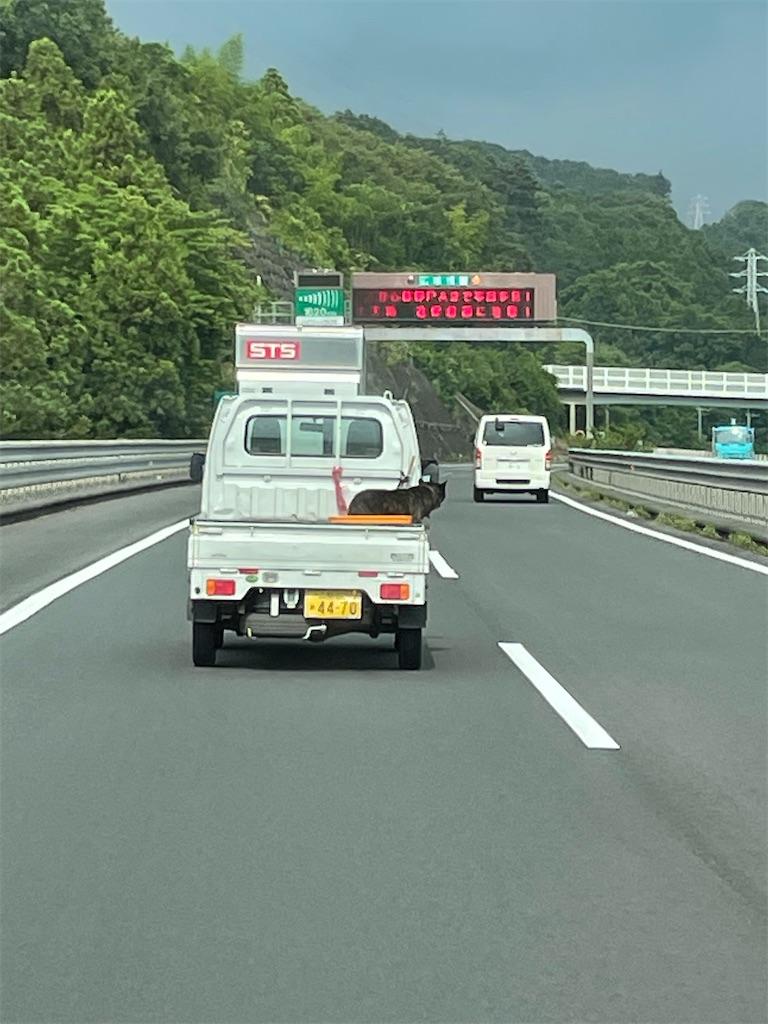 f:id:kazz-matsumura:20210714180212j:plain