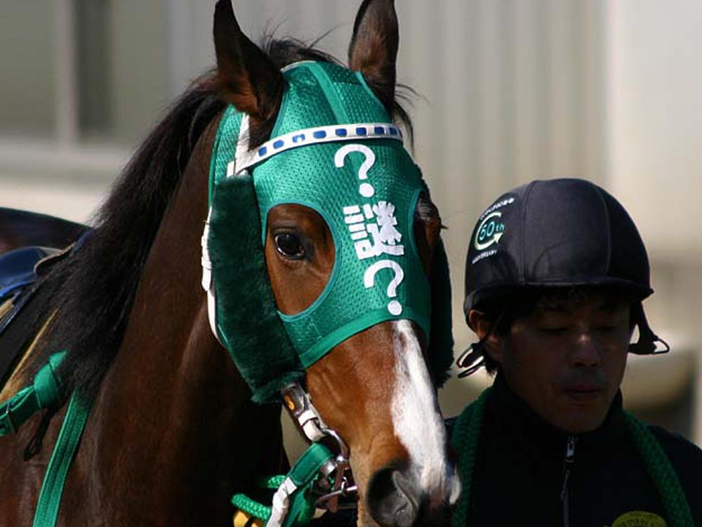 メンコ_ナビ男の競馬録