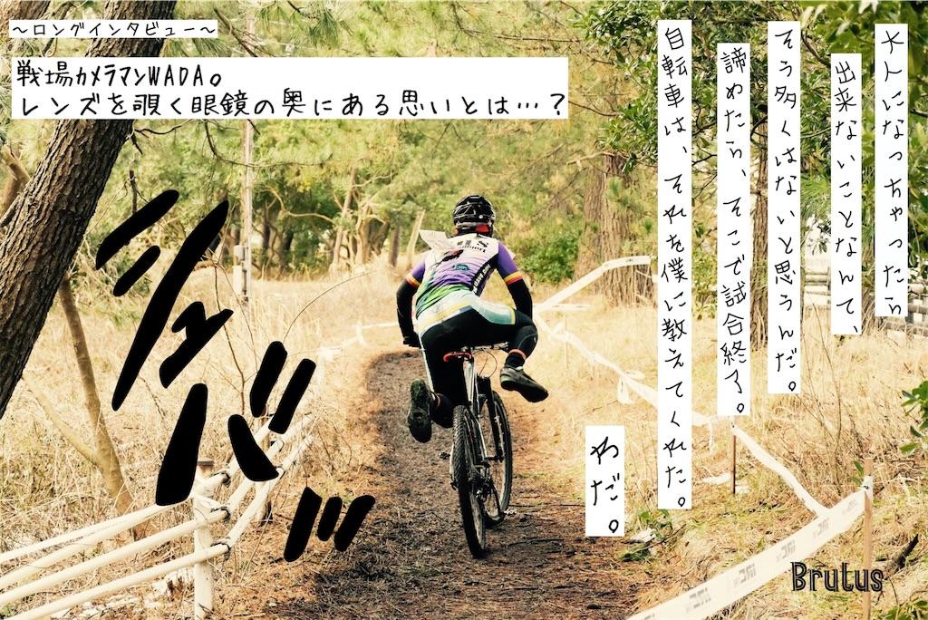 f:id:kchigusa19870316:20181108180406j:image