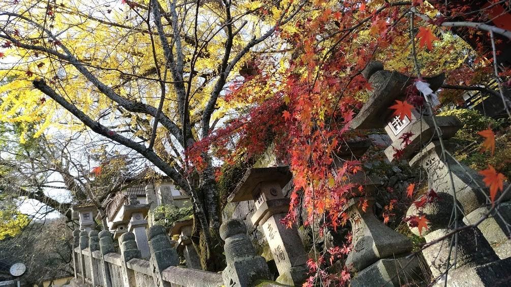 f:id:ke_takahashi:20161203150627j:plain