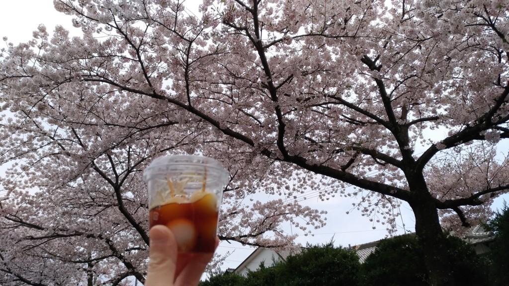 f:id:ke_takahashi:20170409112235j:plain