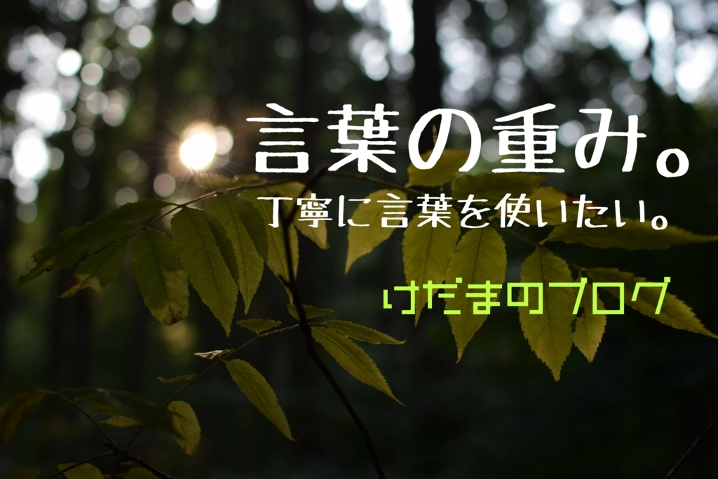 f:id:kedama-rina:20171124033657j:plain