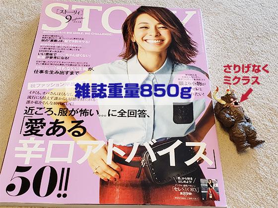雑誌のSTORY