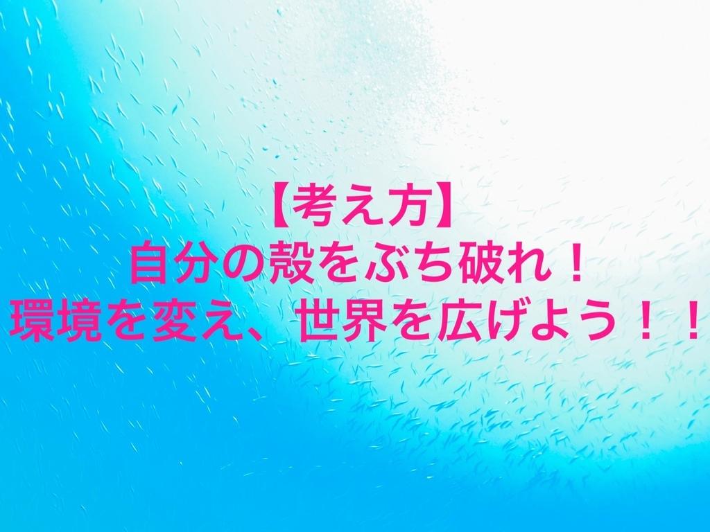 f:id:kei0440:20190225124254j:plain