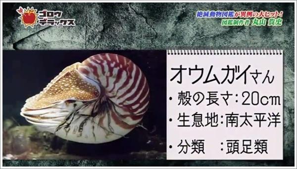 f:id:kei561208:20181211233304j:plain