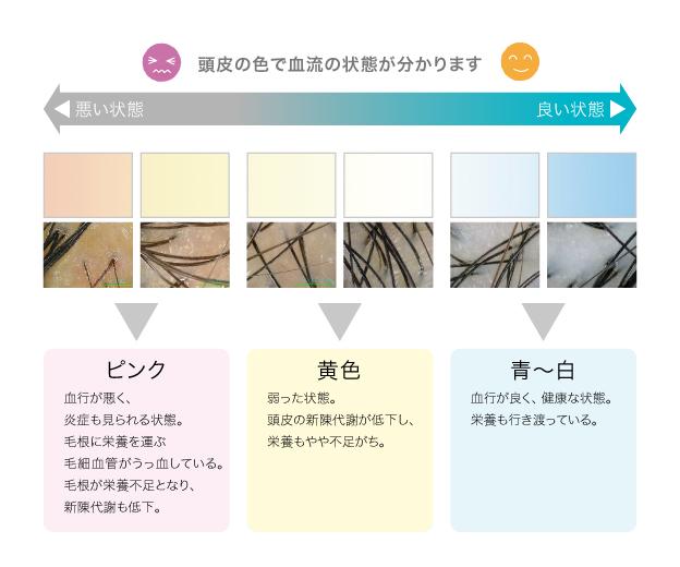 f:id:kei79:20210319132225j:plain
