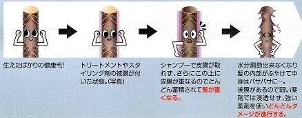 f:id:kei79:20210330182246j:plain