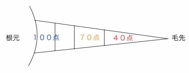 f:id:kei79:20210331154709j:plain