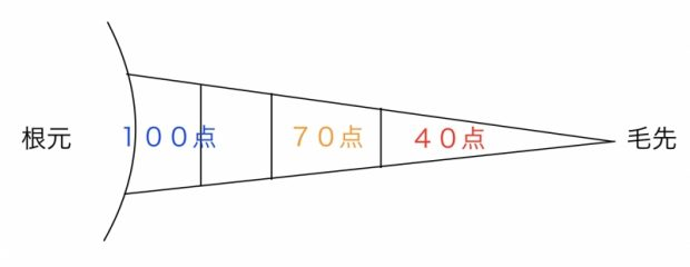 f:id:kei79:20210716154840j:plain