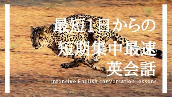 f:id:kei_ta1211:20190114213001j:plain