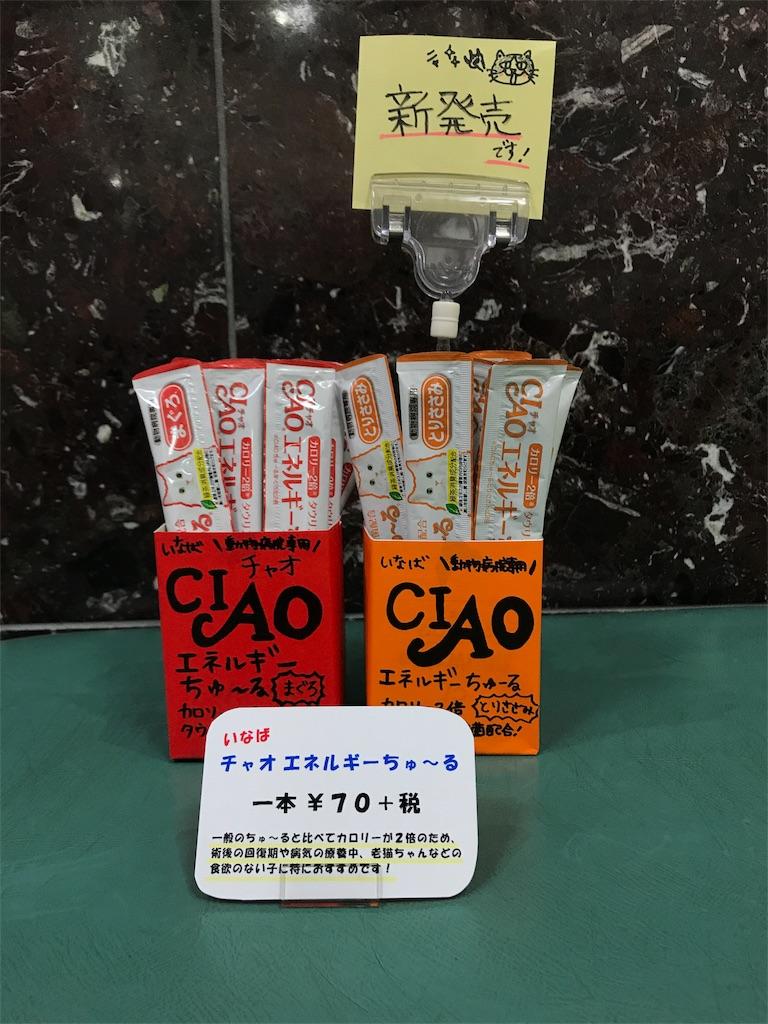 f:id:keiai-animalhospital:20171019170506j:image