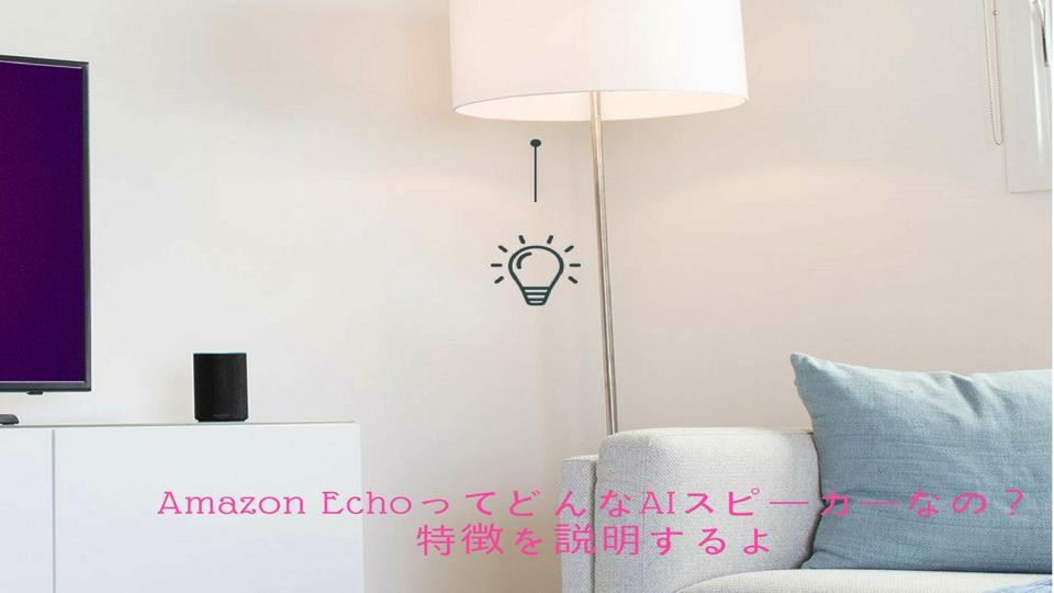 f:id:keiba-jyoshi:20171109165306j:plain