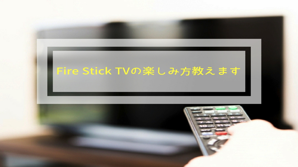 f:id:keiba-jyoshi:20171116221520j:plain
