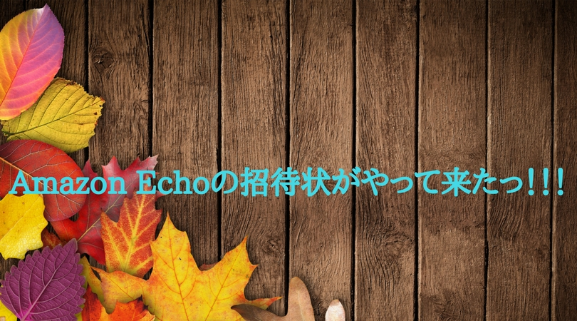 f:id:keiba-jyoshi:20171218172835j:plain