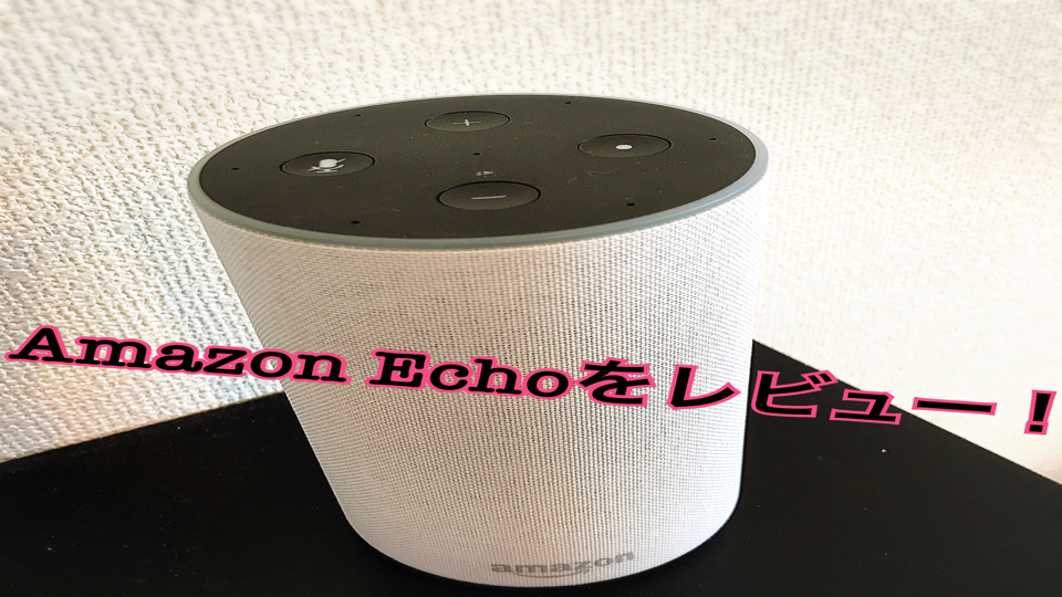 f:id:keiba-jyoshi:20171219131545j:plain