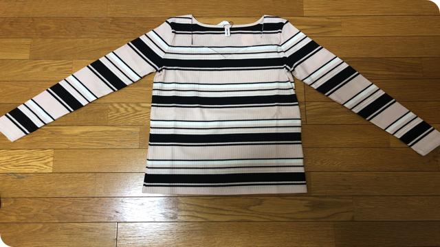 f:id:keiba-jyoshi:20190108230147j:plain