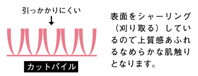 f:id:keiba-jyoshi:20190113183117j:plain