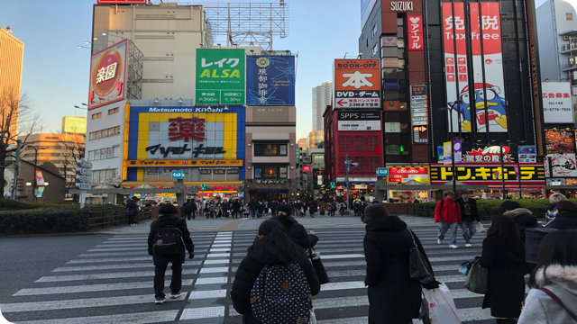 f:id:keiba-jyoshi:20190130212842j:plain