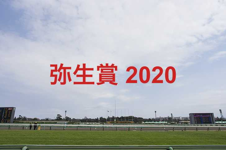 2020 出走 予定 馬 賞 弥生