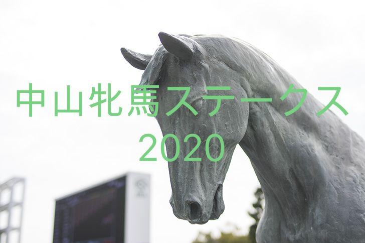 中山競馬場のハイセイコー像の写真