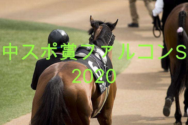 パドックで馬が歩いている写真
