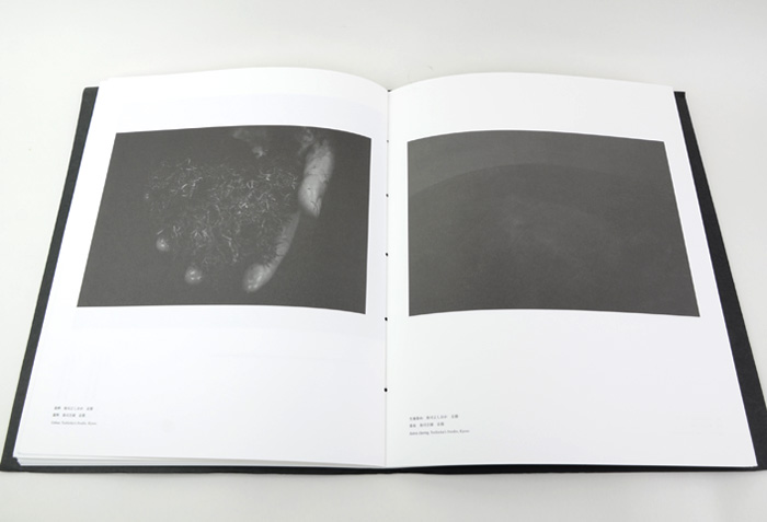 f:id:keibunshabooks:20170421214302j:plain