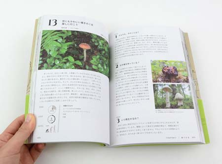 f:id:keibunshabooks:20181105121444j:plain