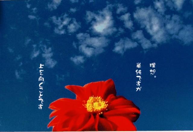 f:id:keichan2020:20200115215540j:image