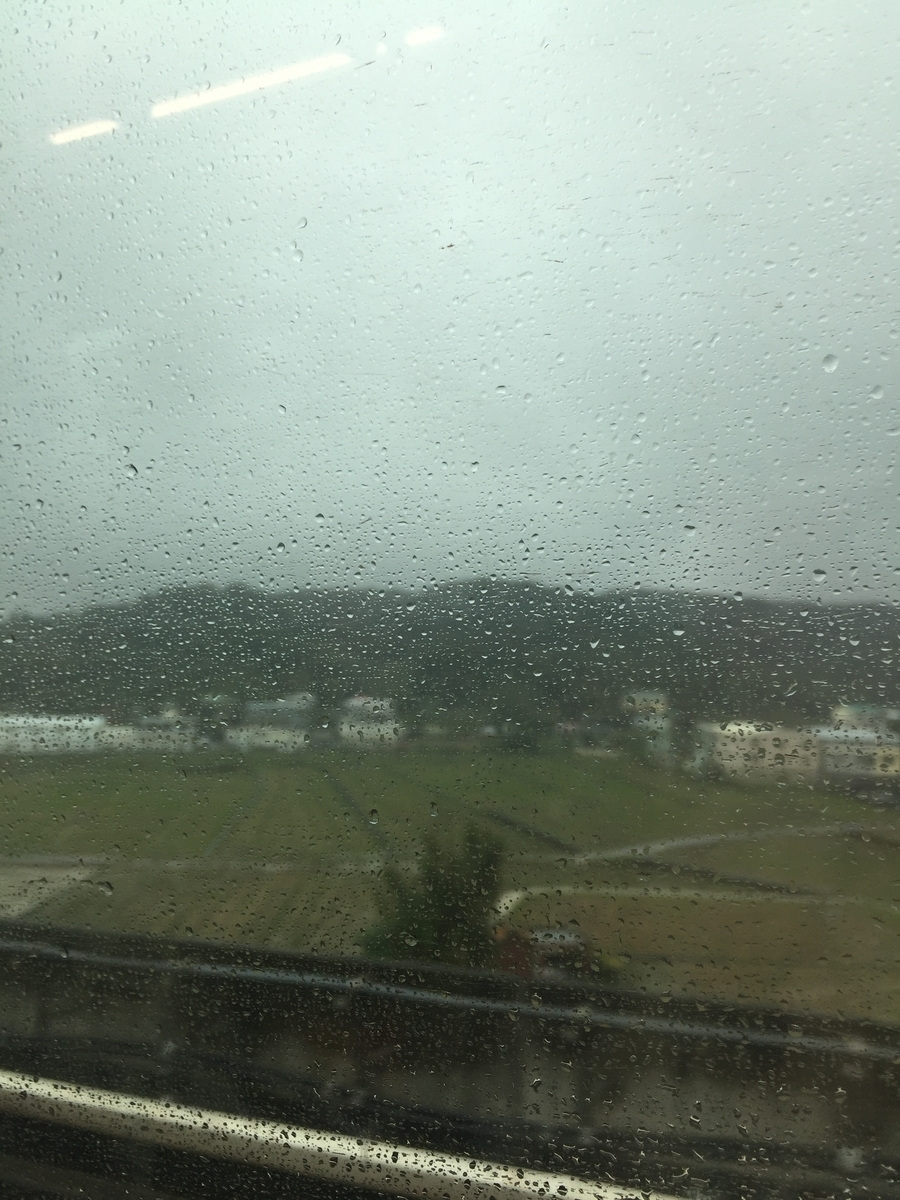 がっつり雨
