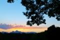 [妙義山][夕暮れ][夕焼け][シルエット][シラカシ]妙義山