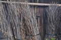 [農具小屋][納屋][倉庫][小屋][梅畑]農具小屋