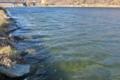 [鏑川][烏川水系][右岸][堰堤][高崎市]鏑川