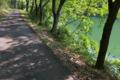 [ダム湖][湖畔][桜並木][遊歩道][散歩道]ダム湖