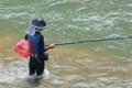 [釣り人][鮎釣り][アユ釣り][友釣り][碓氷川]釣り人