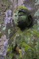 [石仏][苔][森の中][山道]石仏