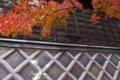 [蔵][モミジ][紅葉][なまこ壁][高崎市]蔵