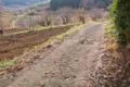 [農道][山里][山麓][村落][農村]農道
