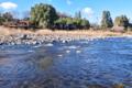 [碓氷川][一級河川][利根川水系][川原][川辺]碓氷川