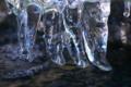 [ツララ][氷柱][つらら][厳寒期][せせらぎ]ツララ