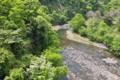 [碓氷川][カジカガエル][利根川水系][一級河川][峡谷]碓氷川