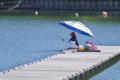[桟橋][釣り人][ヘラブナ釣り][ヘラ師][丹生湖]桟橋