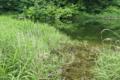 [貯水池][ため池][釣り堀][スケート場][アシ原]貯水池