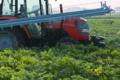 [コンニャク畑][蒟蒻畑][こんにゃく畑][トラクター][朝霧]コンニャク畑