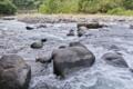 [碓氷川][利根川水系][一級河川][川風][秋風]碓氷川