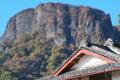 [金鶏山][紅葉][山麓][妙義山][奇勝]金鶏山