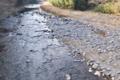 [碓氷川][利根川水系][一級河川][川原][清流]碓氷川